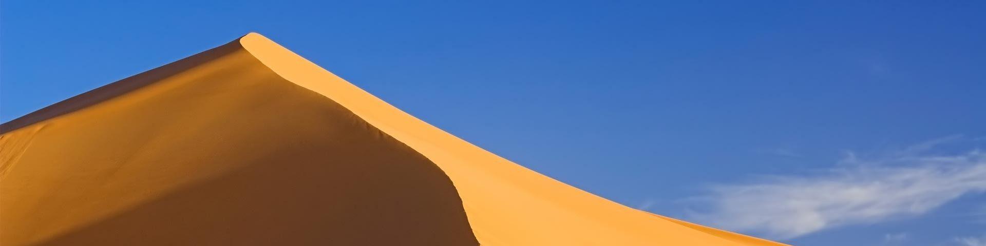 Dune Scholar